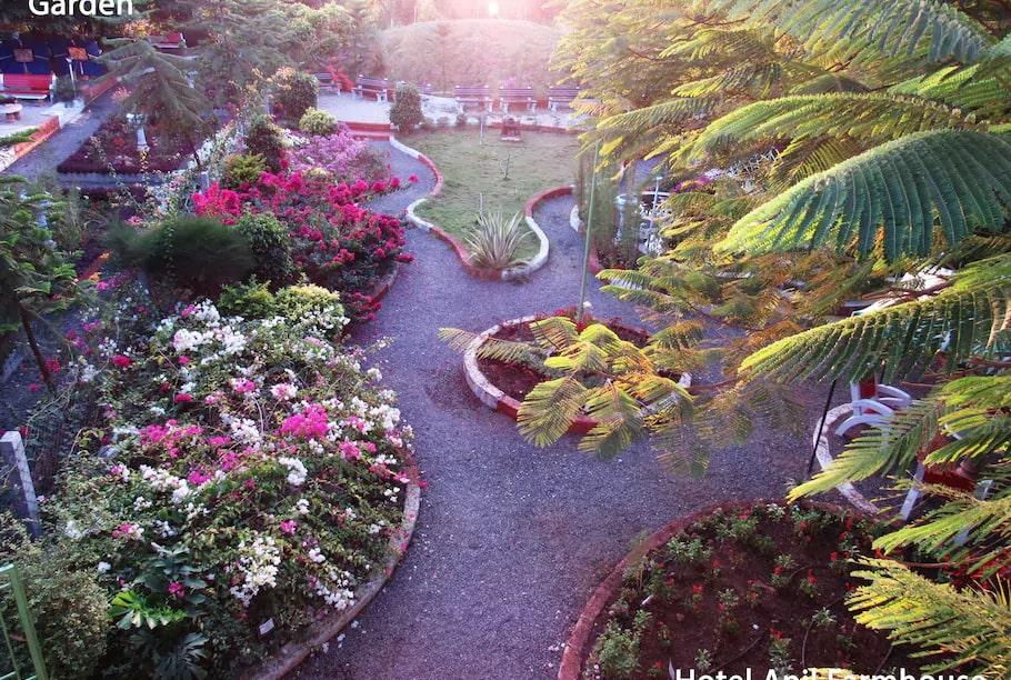 anil-farmhouse-garden