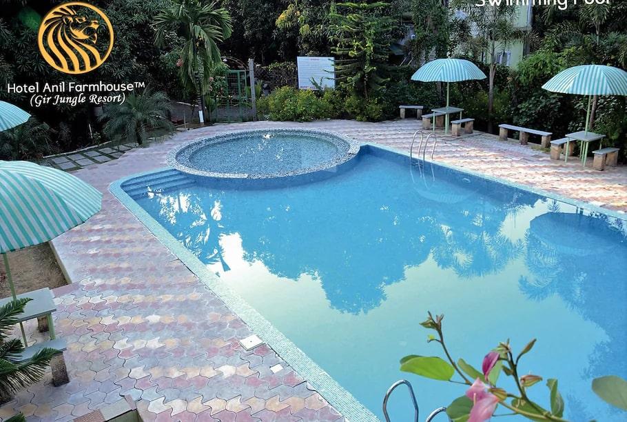 anil-farmhouse-swimming-pool