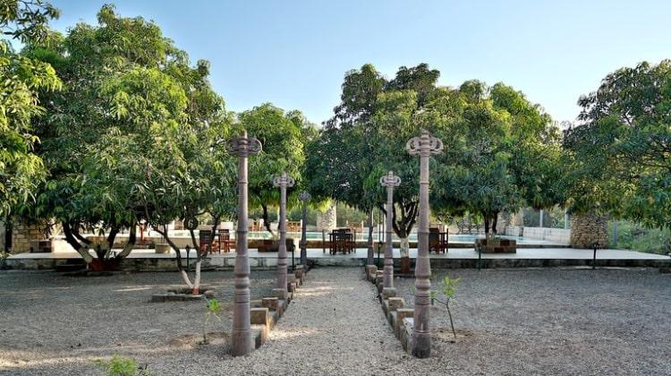girlionspaw-garden