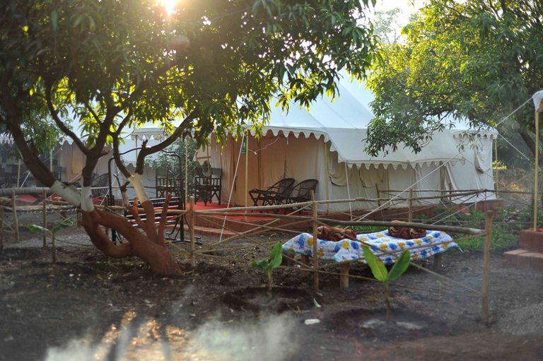 Gir-pride-resort