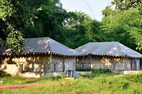 mint-cottages