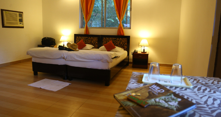 mogliresort-room3