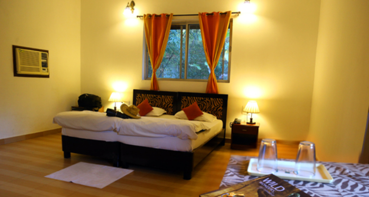 mogliresort-room8