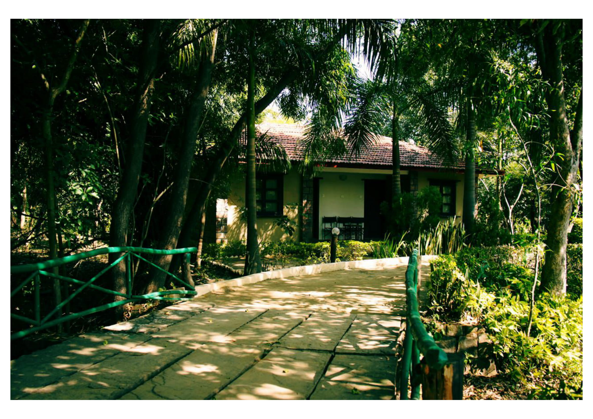tiger-trails-resort