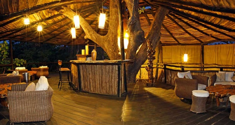 tree-house-dining1