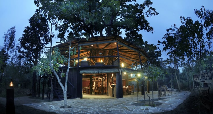 tree-house-dining3