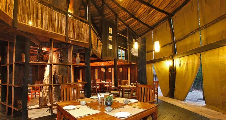 tree-house-restaurant