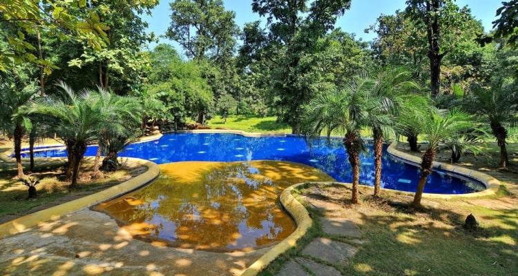 tuli-resort-swimming-pool