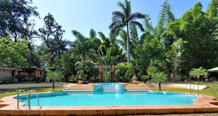 tuli-resort-swimming-pool1