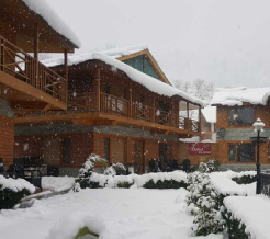 daffodil-cottages-manali