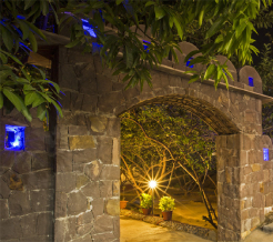 ranthambhore-national-resort