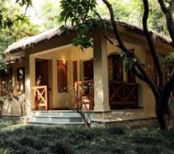 tiger-camp-cottage