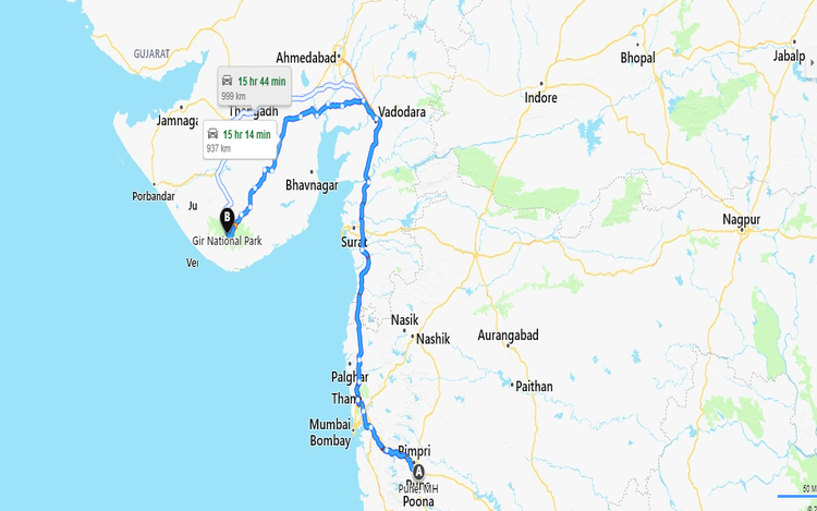 How To Reach Gir National Park From Pune